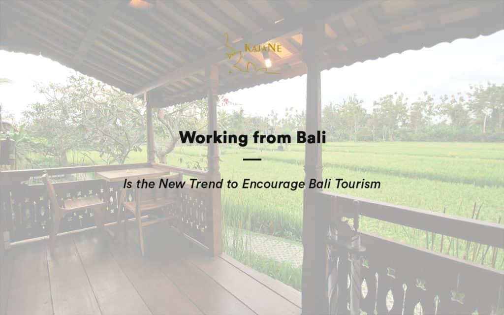 Working from Bali at KajaNe Bali Villas - Private Ubud Villa